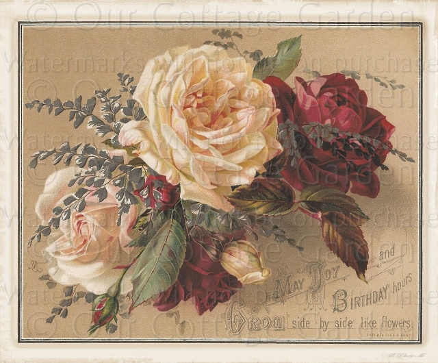 2 Victorian Greetings ROSES Raphael TUCK Our Cottage
