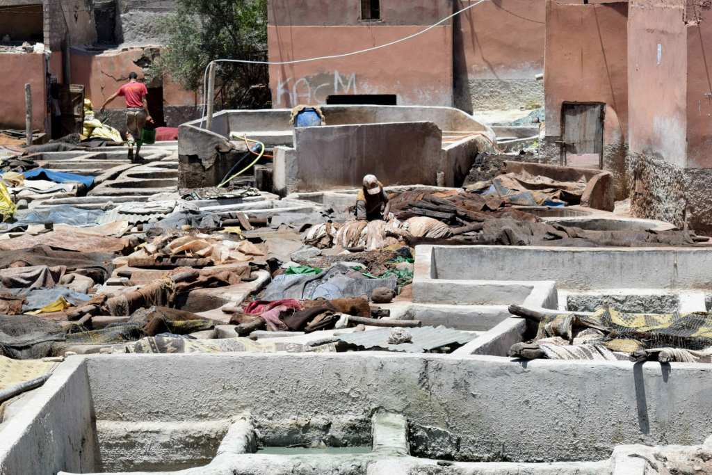 Marrakech Tannery Scam: Tanneries with Man
