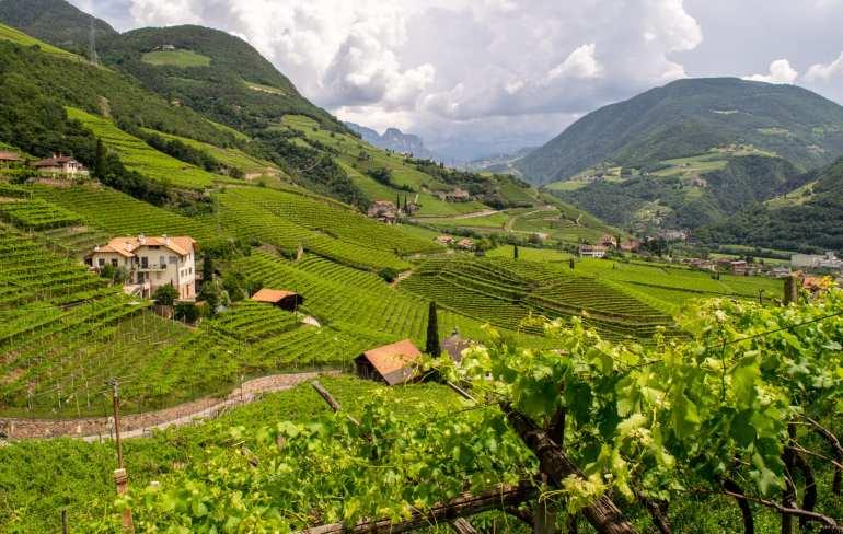 Best Things to Do in Bolzano: View from Santa Maria Maddalena Church