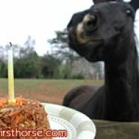 Make your own horse birthday cake