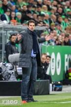 Ralf Hartmann, Wolfsburg's coach.