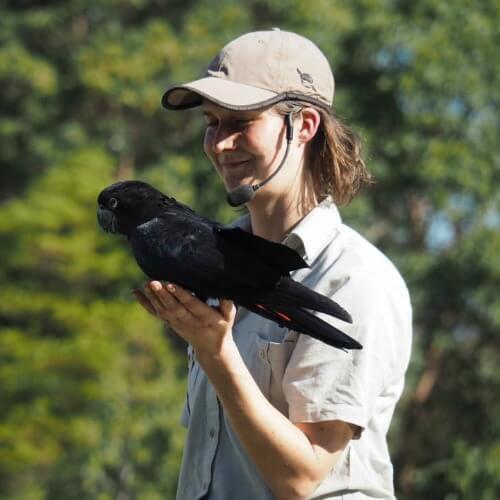 Taronga famous bird show