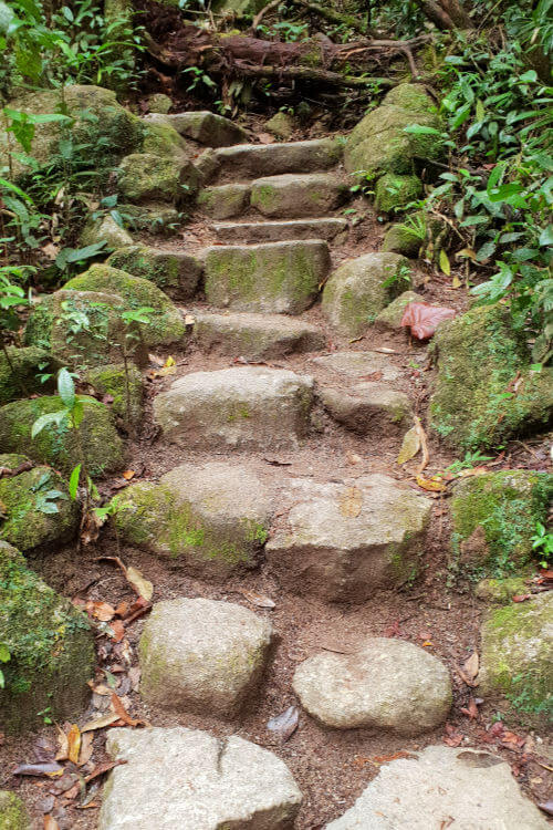 Slippery stone steps in Mossman Gorge Queensland