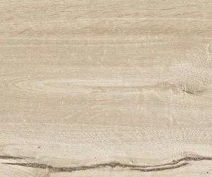 Woodtale betulla