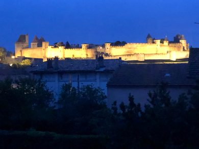 Michael and Errol performing and view of La Cite at night Carcassonne April 2019