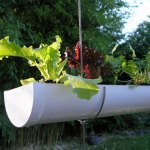 Anyone Can Garden With Container Gardening!