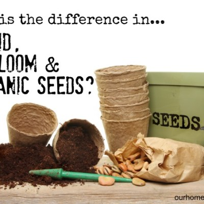 What is the Difference Between Hybrid, Heirloom & Organic Seeds?