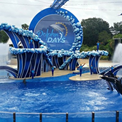Family Travel Adventures at Sea World