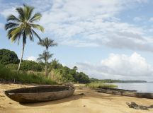 7 Things to Do in Suriname! - Our Honeymoon Destinations