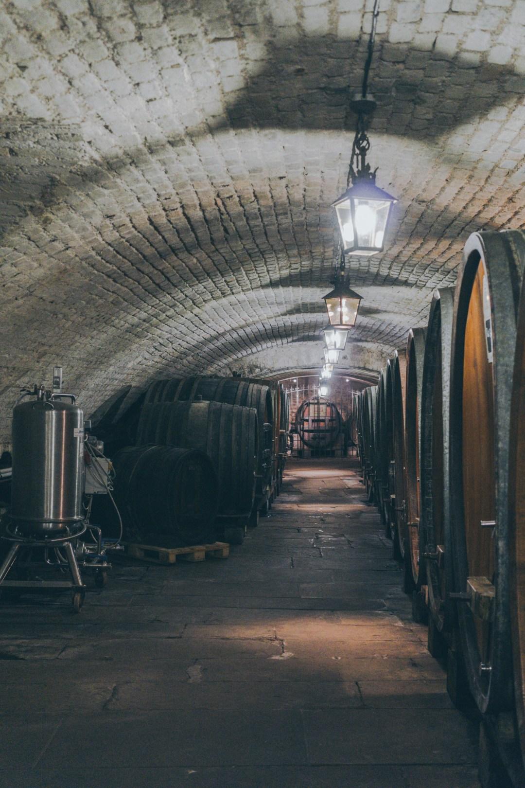 Wine Cellar in Strasbourg