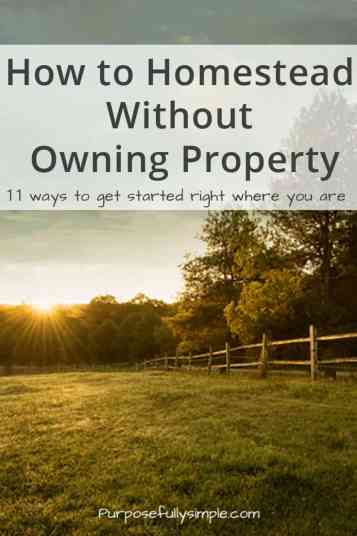 Can you enjoy homestead living without owning a piece of land. Absolutely! Learn how you can get started right where you are.