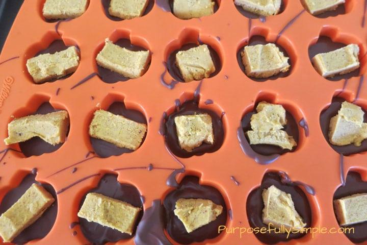 Chocolate-Pumpkin-Truffles-1