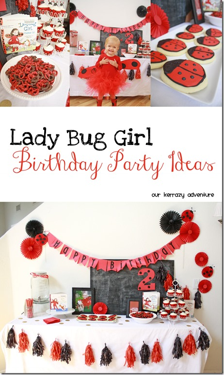 Lady Bug Girl Birthday Party Our Kerrazy Adventure