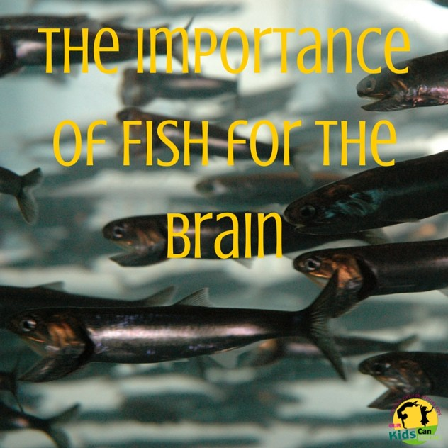 The Importance of Fish for the Brain