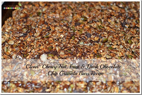 Clean Chewy Nut Fruit Dark Chocolate Chip Granola Bar Recipe