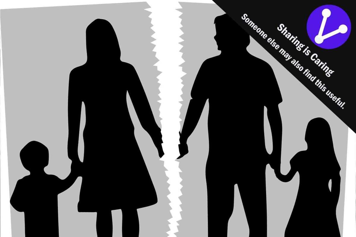 Parenting Plan Parental Plan Court Father Mother