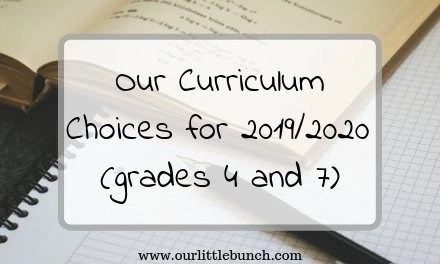 Our Curriculum Choices for 2019/2020 (grades 4 and 7)