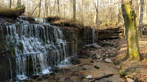 City Lake Natural Area, Cookeville, TN