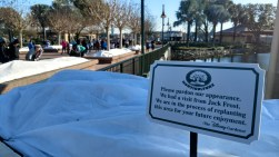 Epcot Center Foliage Damaged by Frost