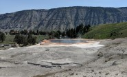A spring that feeds the flow across Mammoth Springs