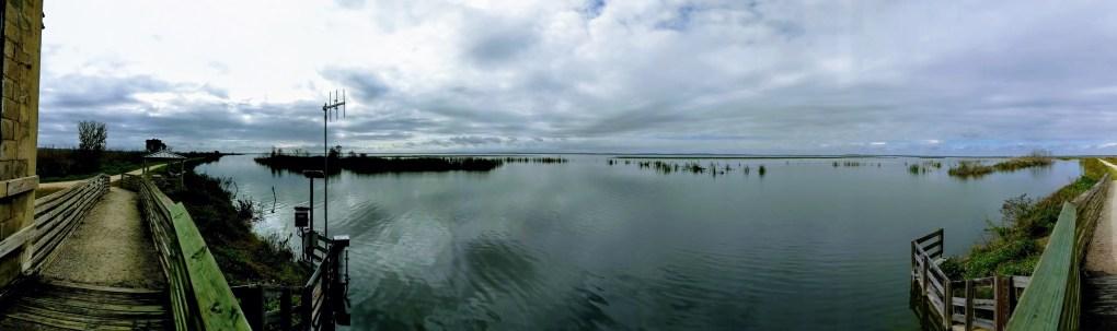 Lake Apopka Wildlife Area