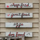 Country store of Golden Acres Goat Ranch (Florida)