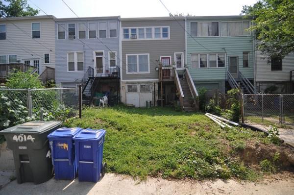 Backyard grass no hedge no fence
