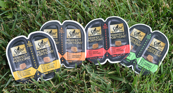 Save A Meal With Sheba Perfect Portions For Cats PLUS 1 Year Supply Giveaway & BOGO Free Coupon