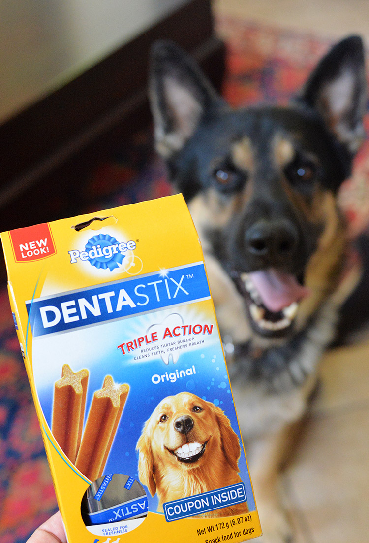 DENTAStix Snackfood for dogs