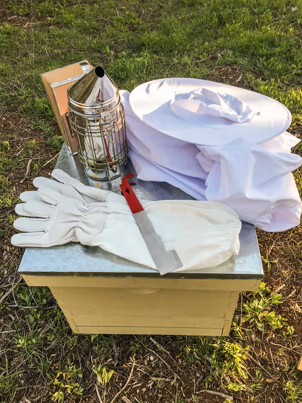 Are you interested in adding bees to your homestead? We are discussing beehives and what you need to get ready for bees on your property. Beginner Beekeeping | Building Beehives | New Beehive