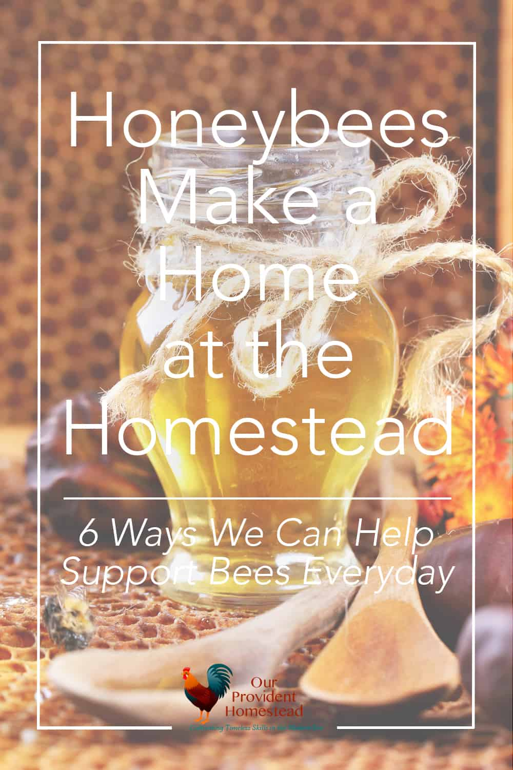 Do you worry about the honeybees? We discuss why we became beekeepers and 6 ways we can help support bees everyday at home. #bees #honeybees #beekeeping #savethebees #homesteading
