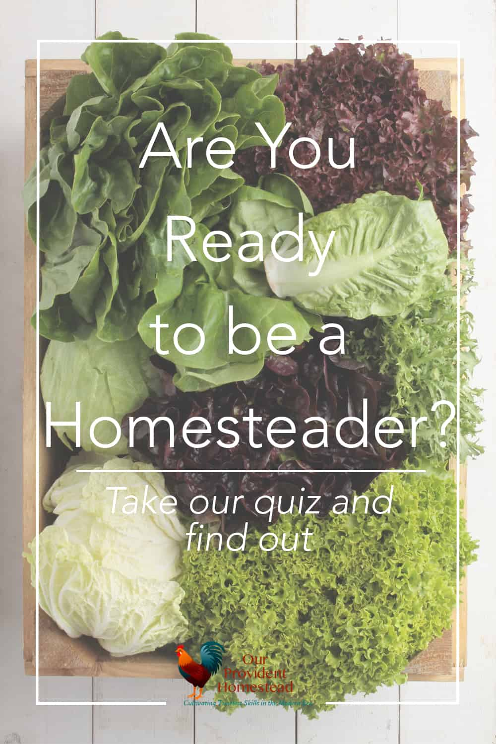 Are you ready to be a homesteader? Take our quiz and find out if you have what it takes to be a homesteader. The answer may surprise you! #homestead #homesteader #homesteading