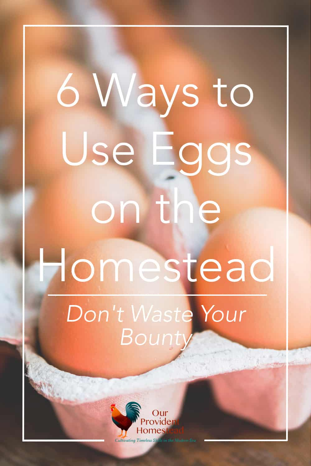 Do you have fresh eggs coming out of your ears this summer? Click here to find out what you can do with all of those wonderful eggs. Eggs | Using Eggs | Fresh Eggs