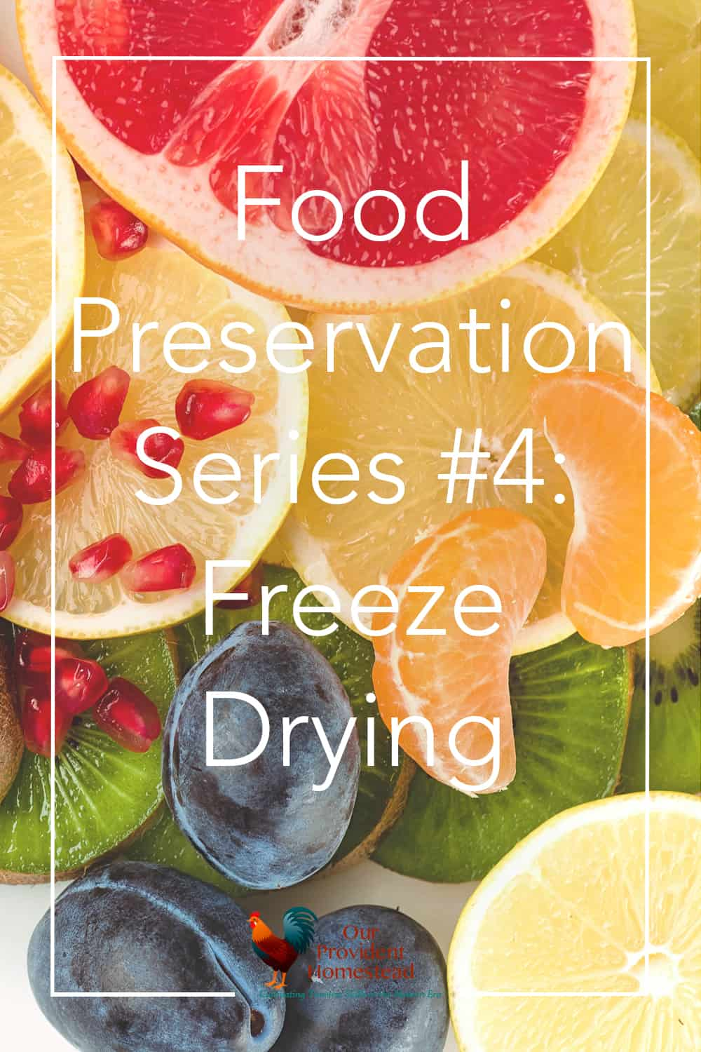 Did you know you can freeze dry your harvest at home? Click here to see the fourth part of our food preservation series and how freeze drying works. #harvestright #freezedrying #foodpreservation