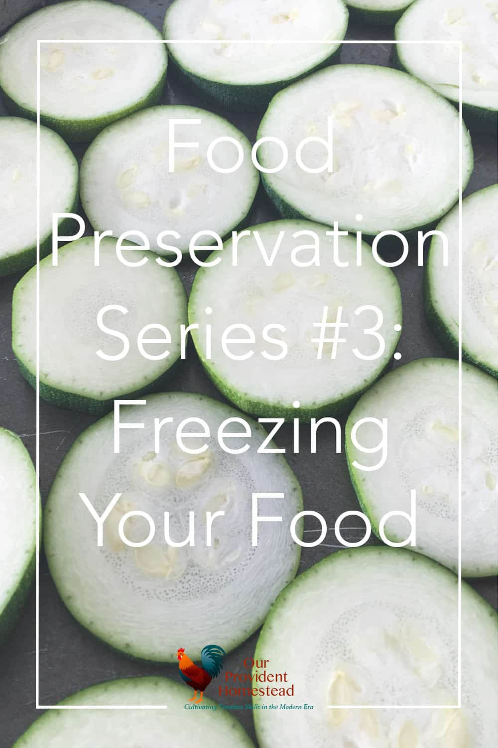How do you preserve your food at home? Click here to discuss freezing as one way to preserve food in our four part preservation series. Freezing Food | Food Preservation | Saving the Harvest