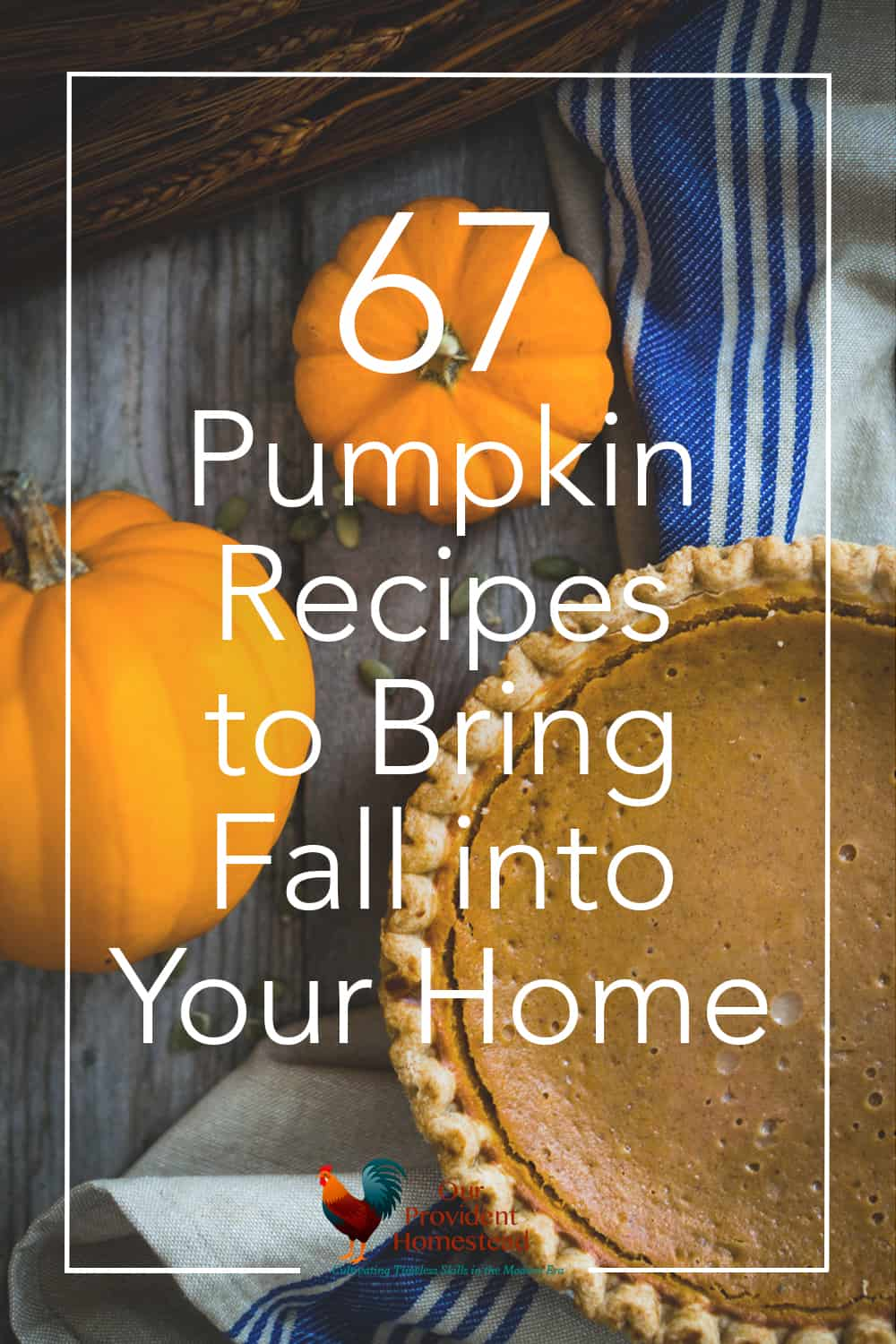 Do you love pumpkin recipes? Click here to get 67 pumpkin recipes to bring fall into your home, from pumpkin pie to body scrub. #pumpkin #fall #autumn #fallrecipes #pumpkinrecipes #pumpkinspice