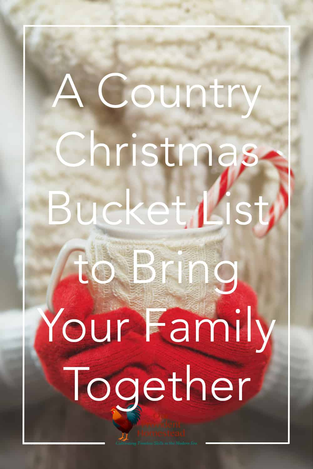 Do you need more ideas for Christmas activities for your family? Click here to get our Christmas bucket list and spend quality time with your family. #Christmas #familyactivities #holidayfun