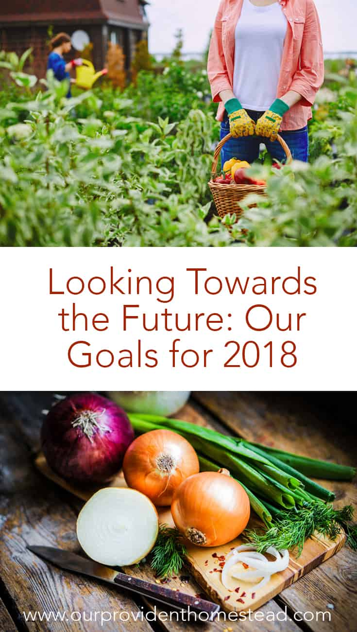 Are you ready for the new year? Click here to see our homesteading goals for 2018 and how we can help you set your goals as well. #homesteading #homesteadinggoals #goals2018