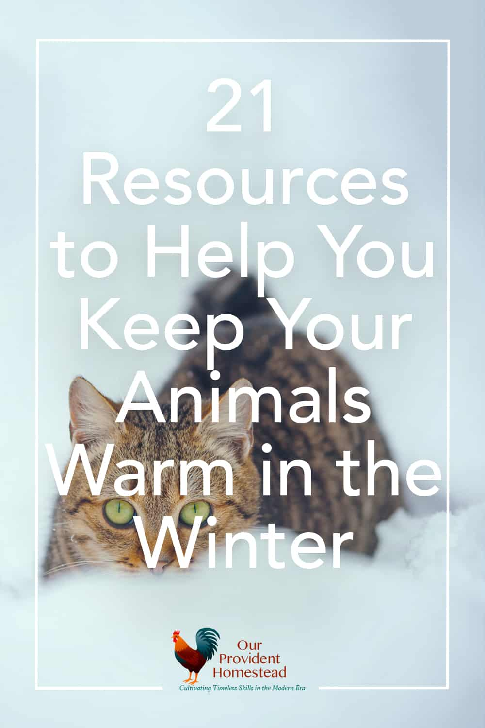 "pinterest pin for ""21 resources to help you keep your animals warm in the winter"