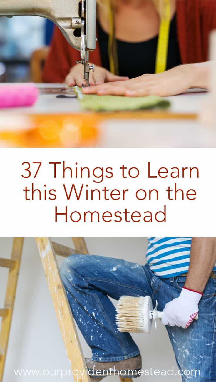 Are you feeling bored or unproductive this winter? Click here to see 37 things to learn this winter to move you towards a more self sufficient lifestyle. #homesteading #homestead #thingstodoinwinter #winter #homesteading skills