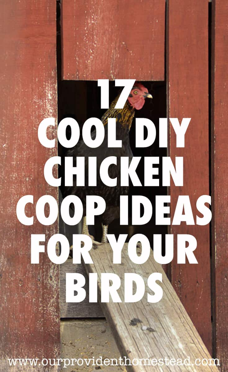 17 Cool Diy Chicken Coop Ideas For Your Birds