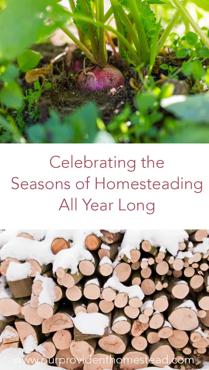 Are you constantly looking forward to the next season on your homestead without enjoying the one you are in? Click here to see how you can celebrate each season as it comes. #homesteading #homestead