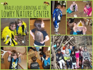 Nature Center_Whales