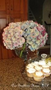 Hydrangea Beauties
