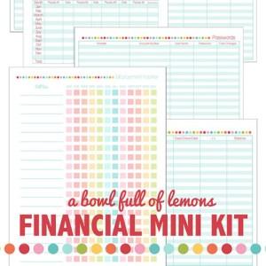 financial mini kit 500 px