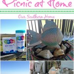 Simple at home picnic with Wet Nap for Walmart by Our Southern Home #AD #PMedia #ShowUsYourMess