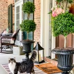 front porch with topiaries