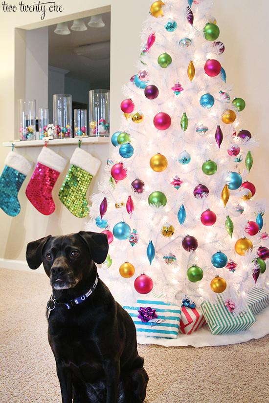 jack-with-christmas-tree