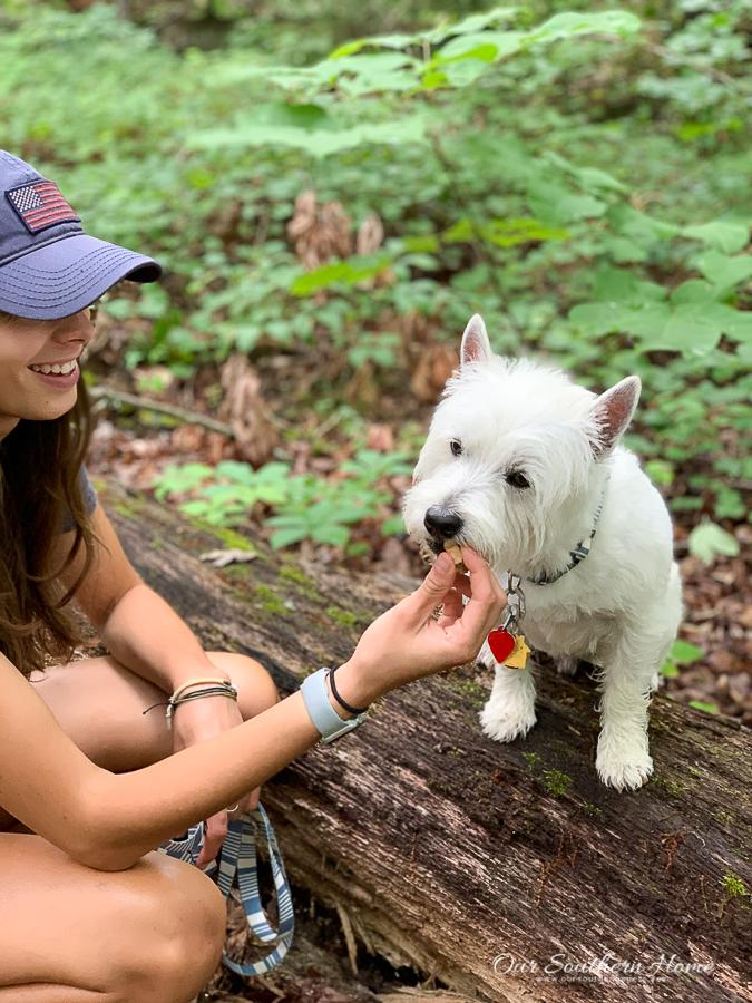 girl feeding a dog snacks