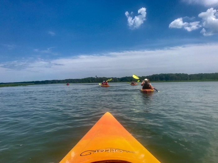 Kayaking is one of the most adventurous things to do in Chincoteague.